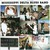 Mississippi Delta Blues Band (Vinyl)