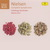 Carl Nielsen: Complete Symphonies (With Neeme Jarvi) CD2