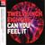 Twelve Inch Eighties: Can You Feel It CD2