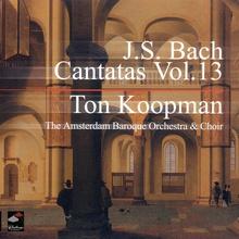 J.S.Bach - Complete Cantatas - Vol.13 CD3