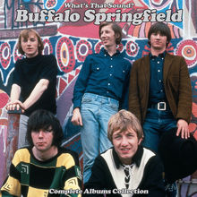 What's That Sound? Complete Albums Collection: Disc 1 - Buffalo Springfield (Mono Mix)