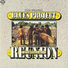 Reunion In Central Park (Vinyl)
