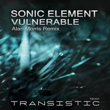 Vulnerable (Remix) (CDS)