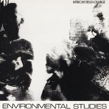 Environmental Studies (Vinyl)