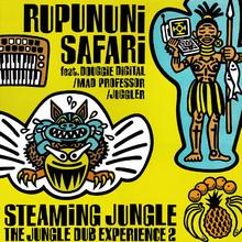 Streaming Jungle - The Jungle Dub Experience 2