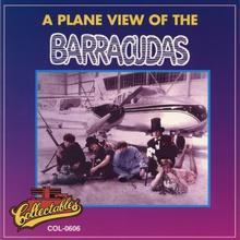 A Plane View Of The Barracudas (Vinyl)