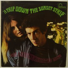A Trip Down Sunset Strip (Vinyl)
