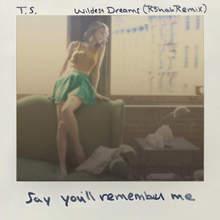 Wildest Dreams (R3Hab Remix) (CDS)