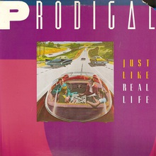Just Like Real Life (Vinyl)