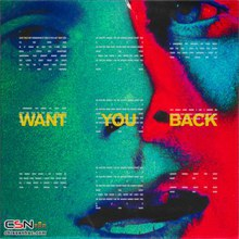 Want You Back (CDS)
