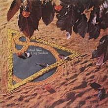 Mind Stroll (Vinyl)