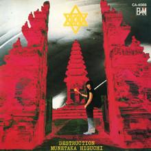 Destruction (Vinyl)