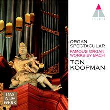 Organ Spectacular