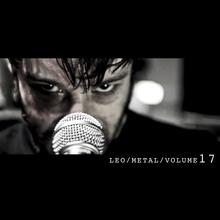 Metal Covers Volume 17