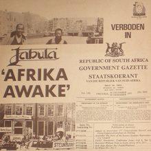 Afrika Awake (Vinyl)