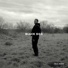 Black Dog (CDS)