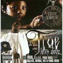 Later Dayz (Disc 2)