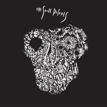 The Skull Defekts