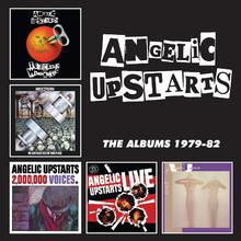The Albums 1979-82: Teenage Warning CD1