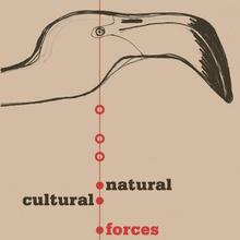 Natural & Cultural Forces