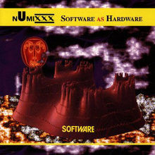 Software As Hardware