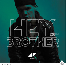 Hey Brother (CDS)