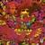 Disraeli Gears (Deluxe Editon) CD2