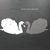 Black Swan Shadow (EP)